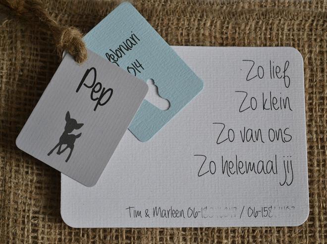 geboortekaartjes-baby-kaart-zoontje-dochtertje-labels-touw.jpg