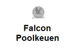 Falcon poolkeuen.jpg