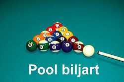 biljartmakers-poolbiljart-250.jpg