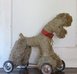 Antique dog on wheels