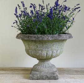 Old French concrete garden vase