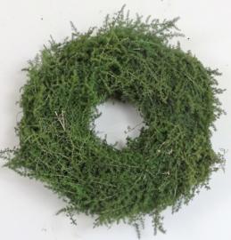 Asparagus krans (30 cm)
