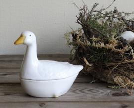 Pate terrine duck