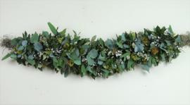 Garland eucalyptus