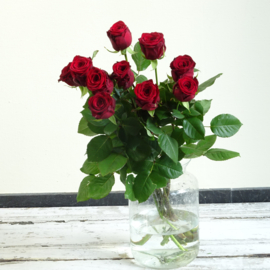 Losse rozen (rood)