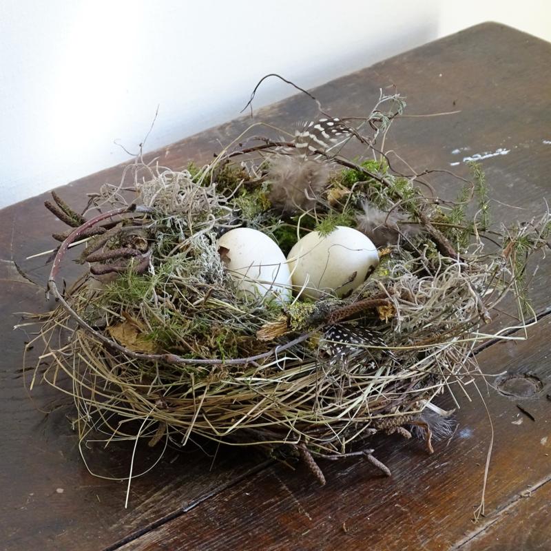 Nest 20 cm met eieren