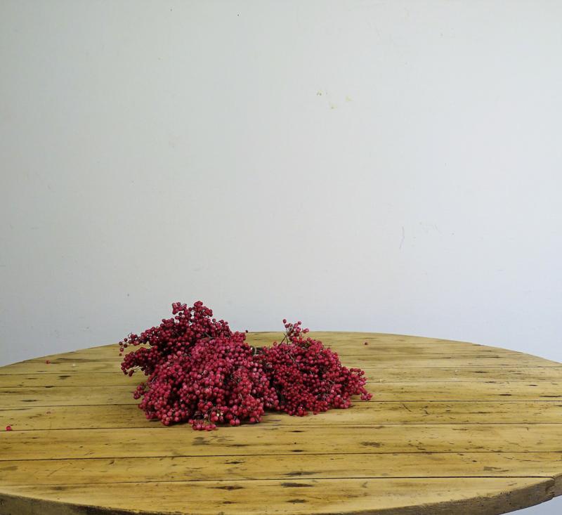 Peperbes bosje (rood)