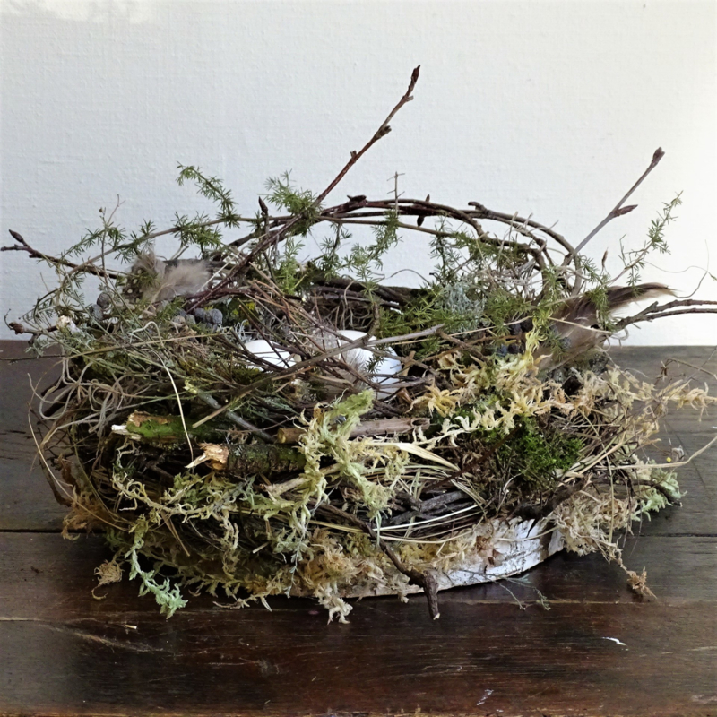 Nest 30 cm met ganzeneieren