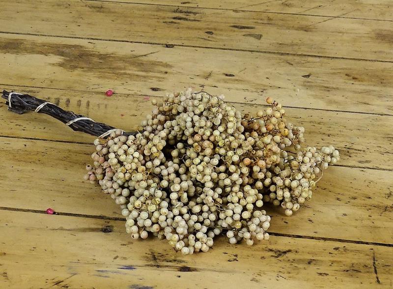 Peperbes bosje (gebleekt)