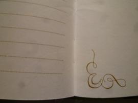 Notebook van Papaya-