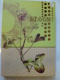 Notebook van Papaya- Bloom.