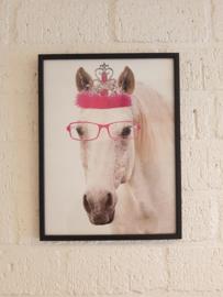 Zoedt poster wit paard in zwart houten lijst.