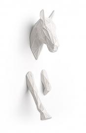 Equus, galoperend paard.