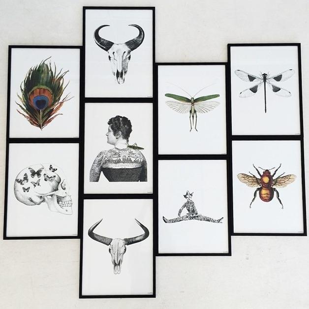 Posters en kaarten van Vanilla Fly.