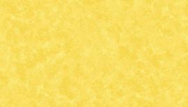SprayTime  Y82 Daffodil