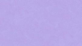 Dimples P22 Baby Viola