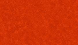 Spraytime N58 Tangerine