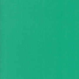 Bella Solid  9900 -304 spearmint