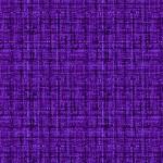 cx9316_eggplant