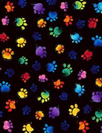 C7487-multi colored paws