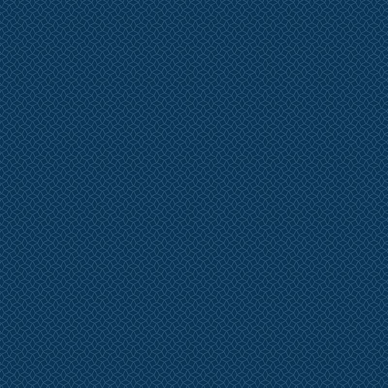 9742B Blue Indigo