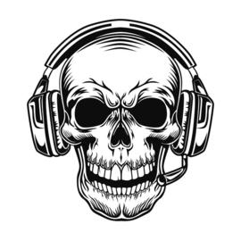 Radio / Headset / PTT / Accessoires