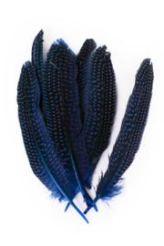 parelhoen veren blauw