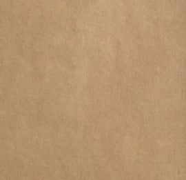 florence cardstock smooth | kraft dark