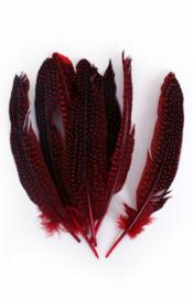 parelhoen veren rood