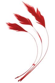 veren fly | rood