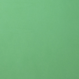 florence cardstock smooth | emerald