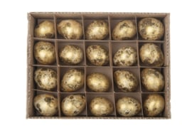 kwartelei | goud 40 stuks