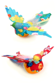 mus multicolor