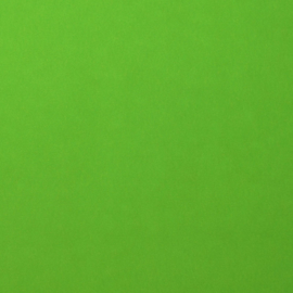 florence cardstock smooth | frog