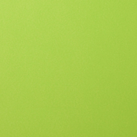 florence cardstock smooth | lime