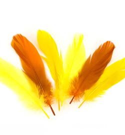 veren geel/oranje 17-18cm