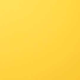 florence cardstock smooth | lemon yellow
