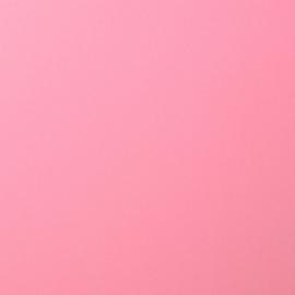 florence cardstock smooth | pink