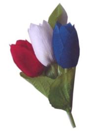 broche tulp rood/wit blauw