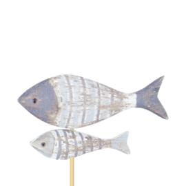 bijsteker vissen hout