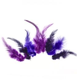 veren paars