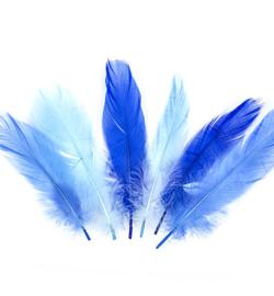 veren blauw 17/18cm