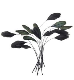 veren zwart