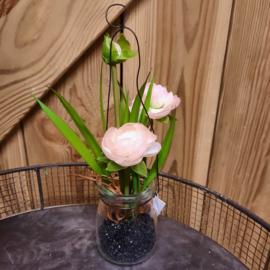ranonkel in glazen pot | licht roze