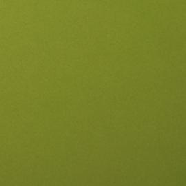 florence cardstock smooth | olive