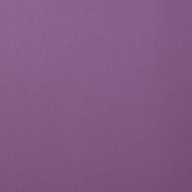 florence cardstock smooth | clematis