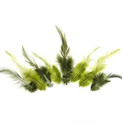 veren groen