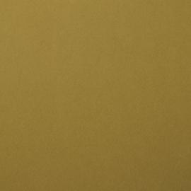 florence cardstock smooth | acacia