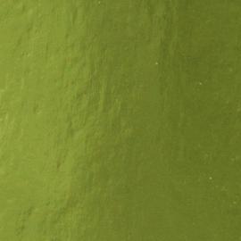 Tonic Studios mirror card A4 holly green