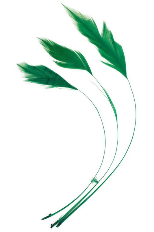 veren fly | groen